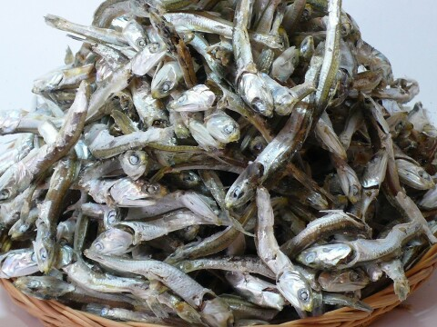 DRIED ANCHOVY FROM IRAN (BOILED OR UNBOILED)